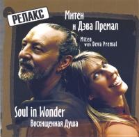 Купить Митен и Дэва Премал. Soul in Wonder (aудиодиск) в интернет-магазине Ариаварта