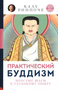Практический буддизм. Простые шаги к глубокому опыту. Том V (мягкий переплет).