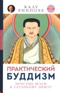 Практический буддизм. Простые шаги к глубокому опыту. Том V (твердый переплет).
